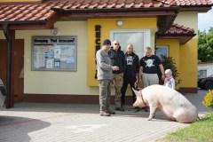 Tierfreundlich_006